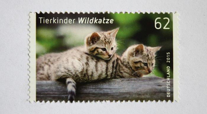 wildkatzen_briefmarke_1