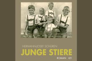 cover_schueren_junge_stiere
