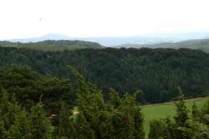 Eifelon eifelsteig blankenheim nach mirbach 2